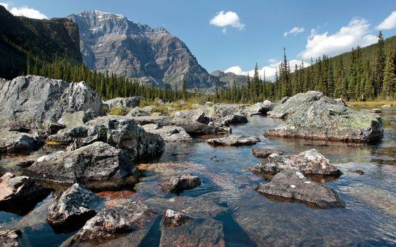 Photo free stone boulders, lake key, forest