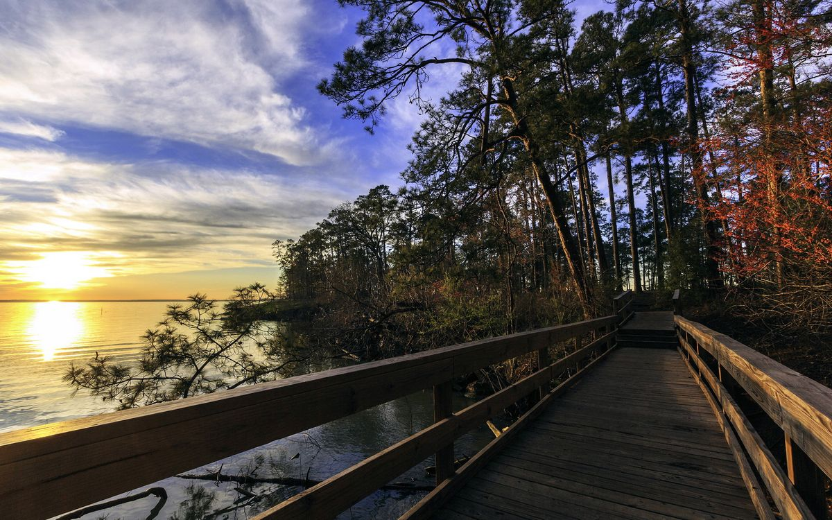 Фото бесплатно мостик, мост, деревянный, загород, лес, река, небо, солнце, природа, природа