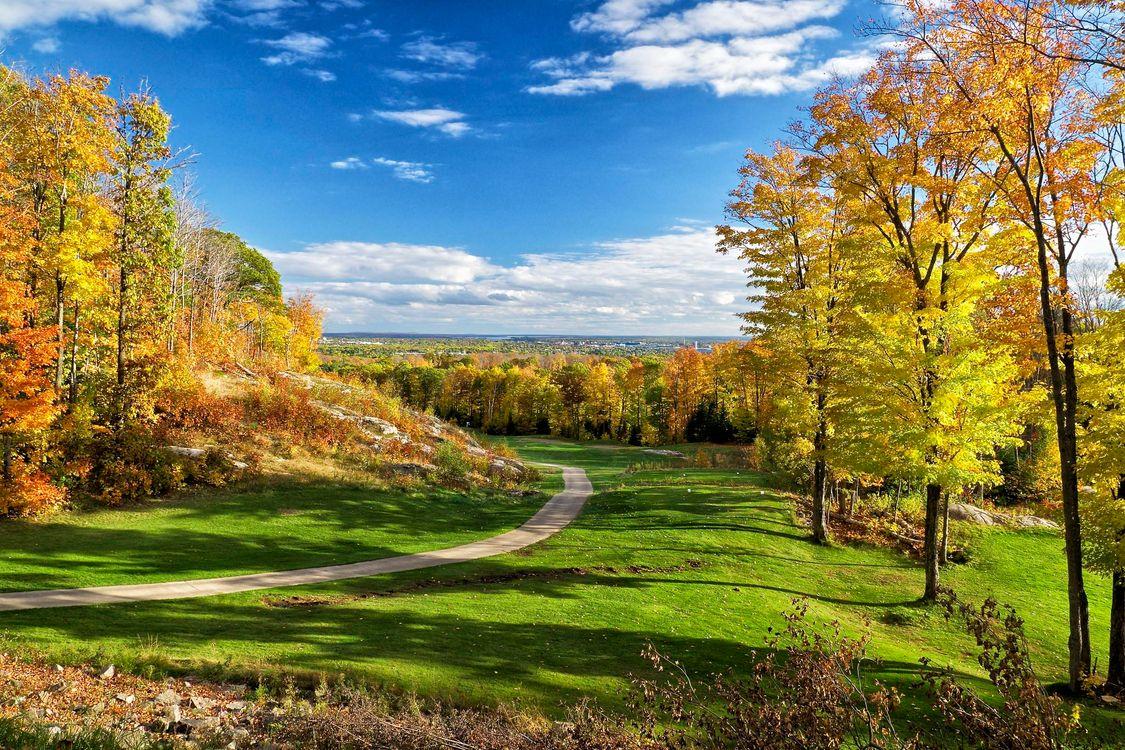 Фото бесплатно осень, поле, холмы, дорога, деревья, пейзаж, пейзажи