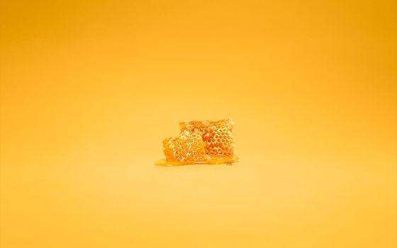Фото бесплатно пчелиные, соты, воск