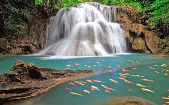Заставки природа, водопад, рыбы