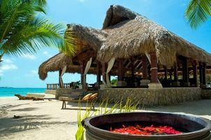Бесплатные фото тропики,море,пляж,разное
