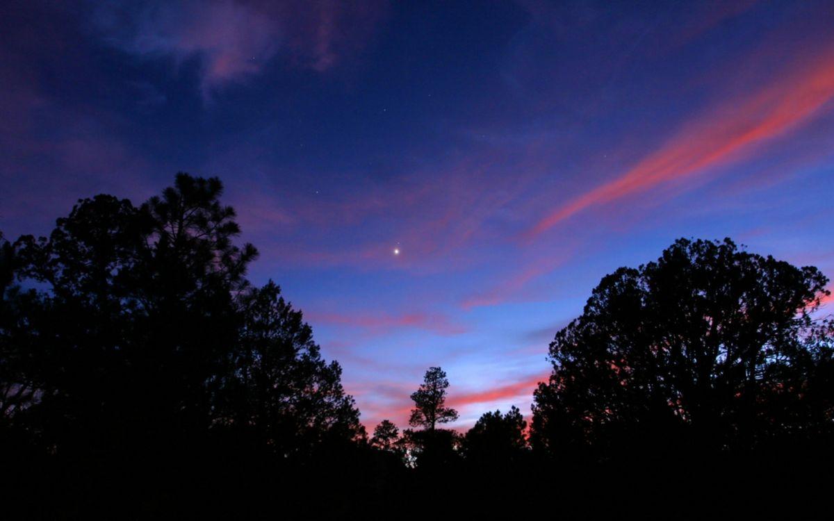 Фото бесплатно вечер, деревья, небо, звезда, облака, природа, пейзажи, пейзажи