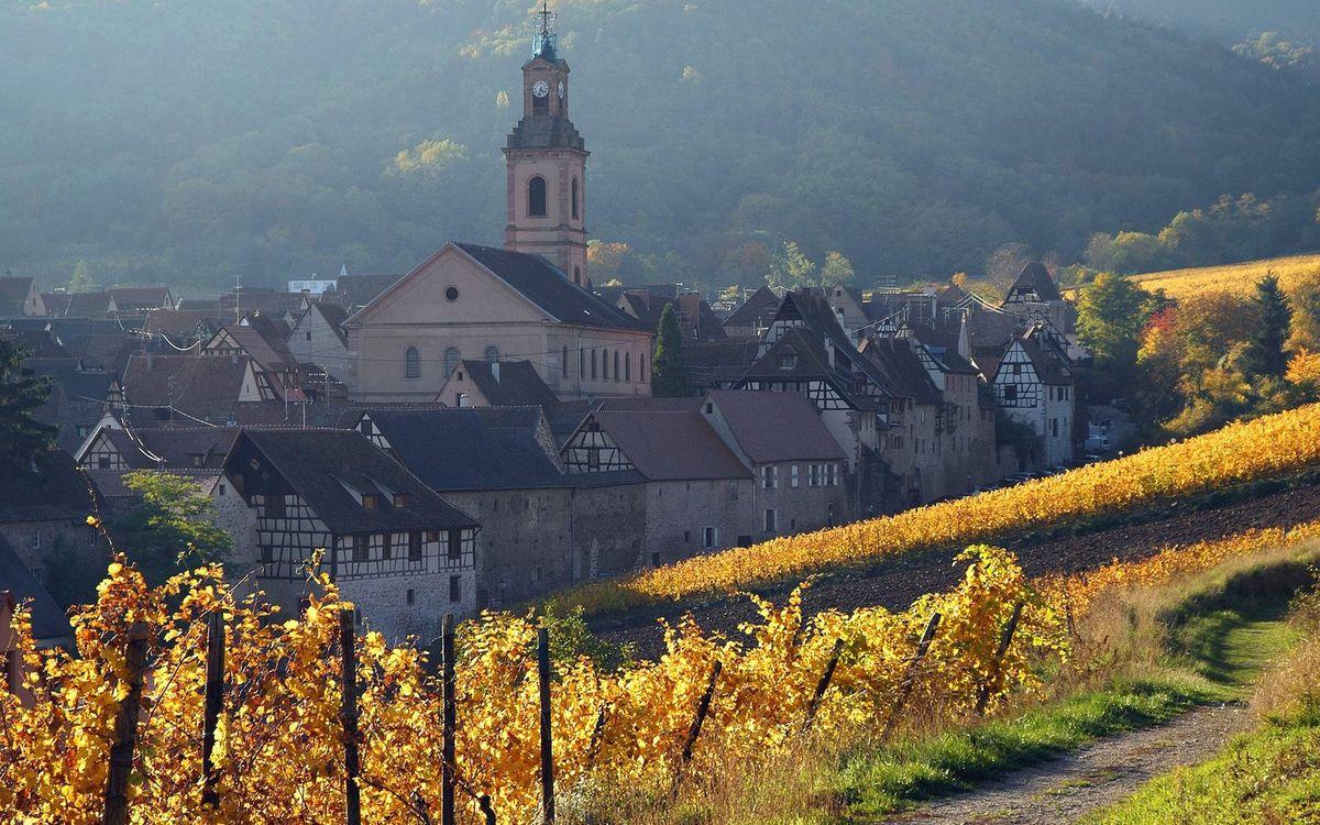 Фото бесплатно виноградники, дома, здания, башня, часовня, деревья, холмы, город