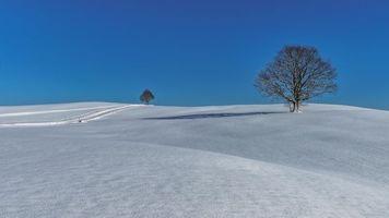 Бесплатные фото зима,снег,холмы,сугробы,деревья,пейзаж