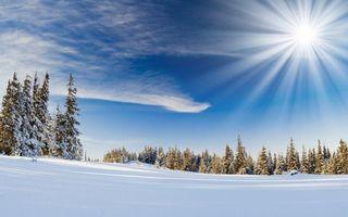 Бесплатные фото зима,поле,снег,сугробы,лес,елки,солнце