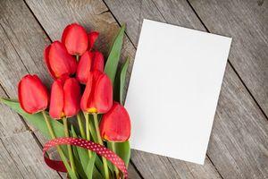 Красивые фотографии на тему тюльпаны, цветы