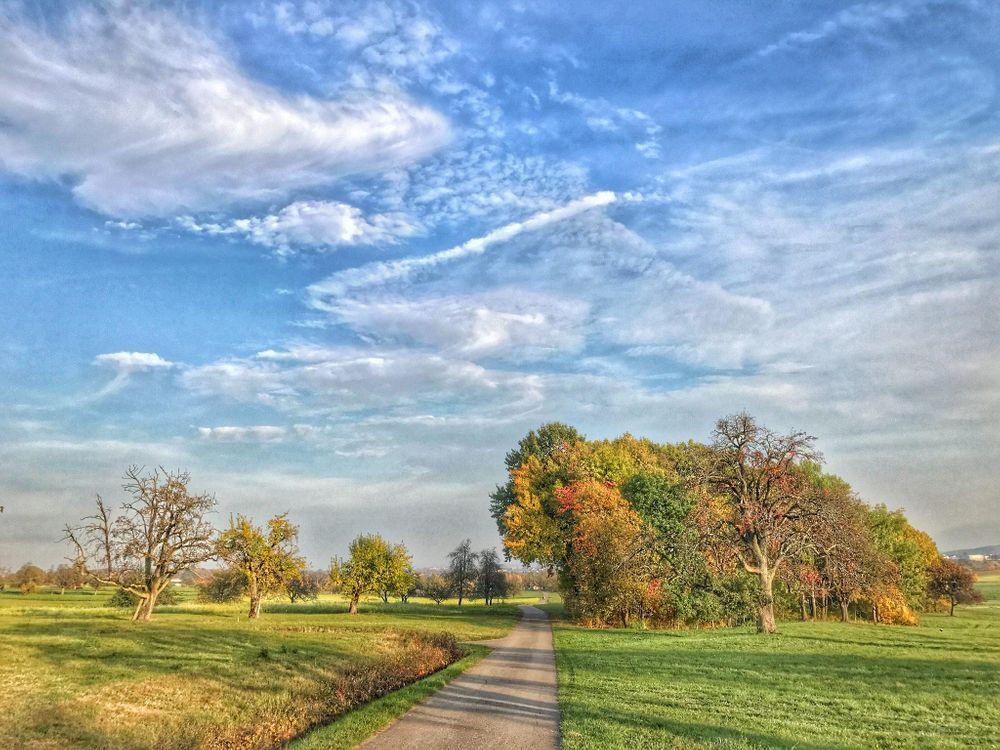 Фото бесплатно осень, поле, дорога - на рабочий стол