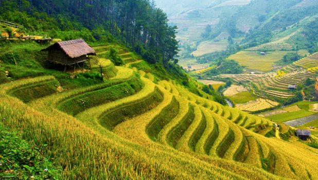 Вьетнам, Ban Gioc, трава, холм, поселок