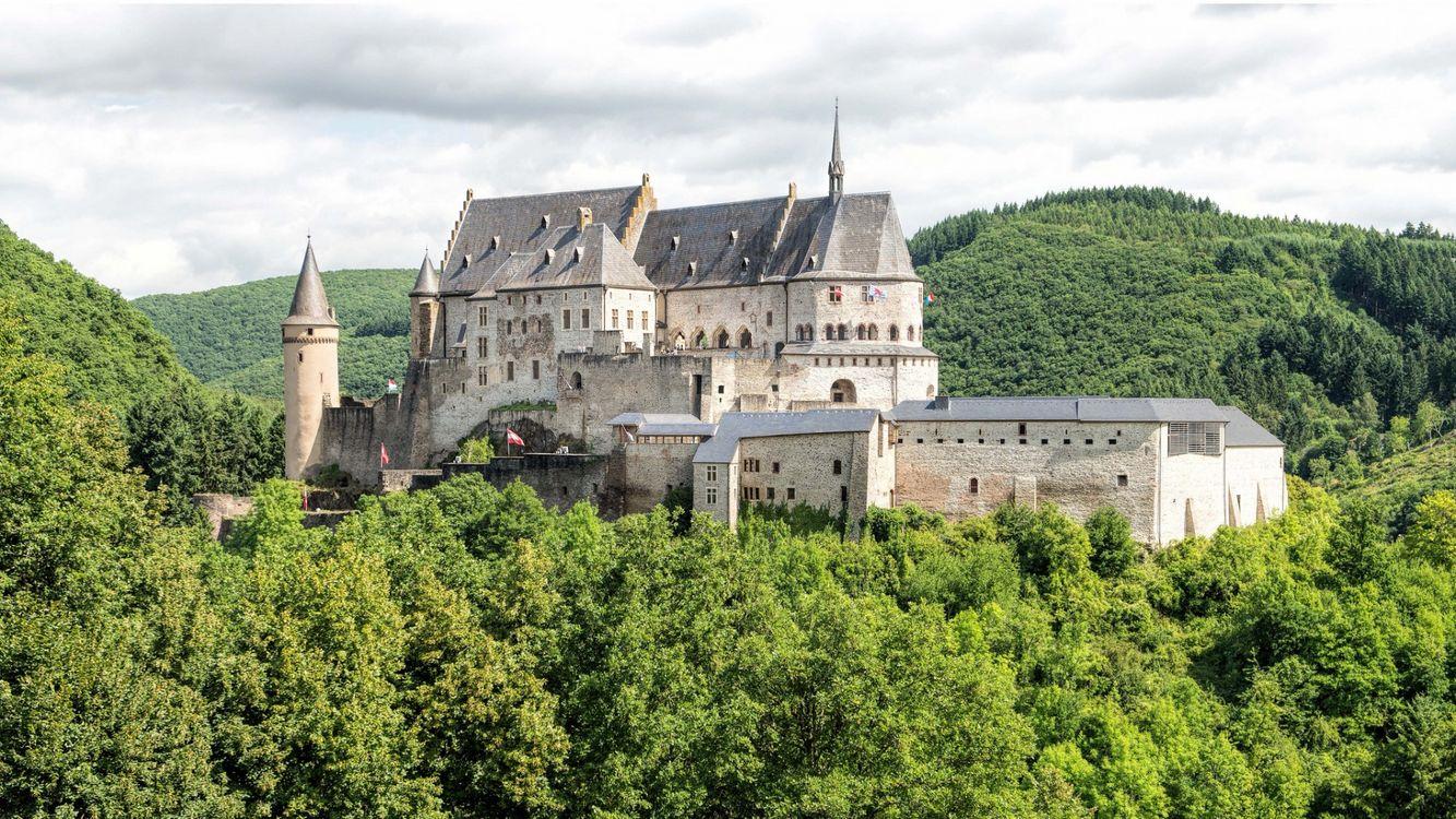 Картинка замок, Вианден, Люксембург, деревья, лес, пейзаж на рабочий стол. Скачать фото обои город