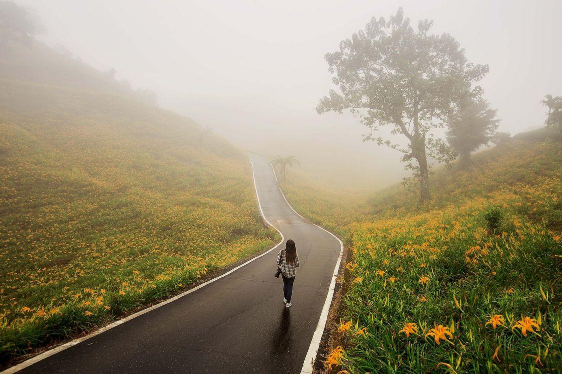 Дорога счастья красивые картинки