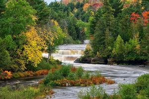 Бесплатные фото lower tahquamenon falls,chippewa county,michigan,осень,лес,деревья,река