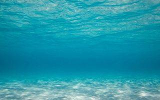 Бесплатные фото море,дно,песок,вода