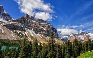 Бесплатные фото лес,деревья,река,горы,снег,небо,облака