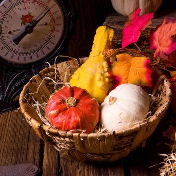Free basket, autumn leaves, beautiful photo