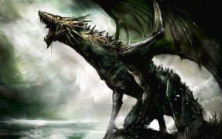 Бесплатные фото дракон,крылья