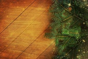 Photo free Christmas, fir branches, new year
