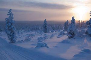 Бесплатные фото закат,зима,деревья,сугробы,дорога,пейзаж
