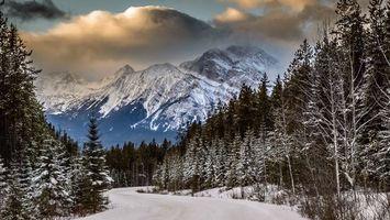 Бесплатные фото зима,дорога,снег,лес,деревья,горы,небо