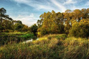 Бесплатные фото осень,река,поле,деревья,пейзаж