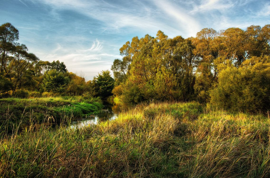 Photos for free autumn, river, field - to the desktop