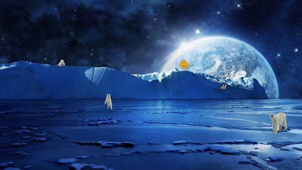 Бесплатные фото северный полюс,белые медведи,планета,art