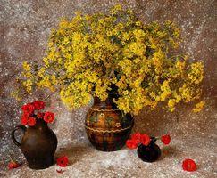 Бесплатные фото натюрморт,вазы,ваза,букет,цветы,розы,флора