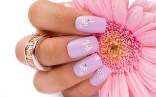 Фото бесплатно женская рука, цветок, кольцо, розовый фон