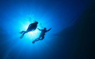 Фото бесплатно море, водолазы, ласты, снаряжение, пузыри, солнце