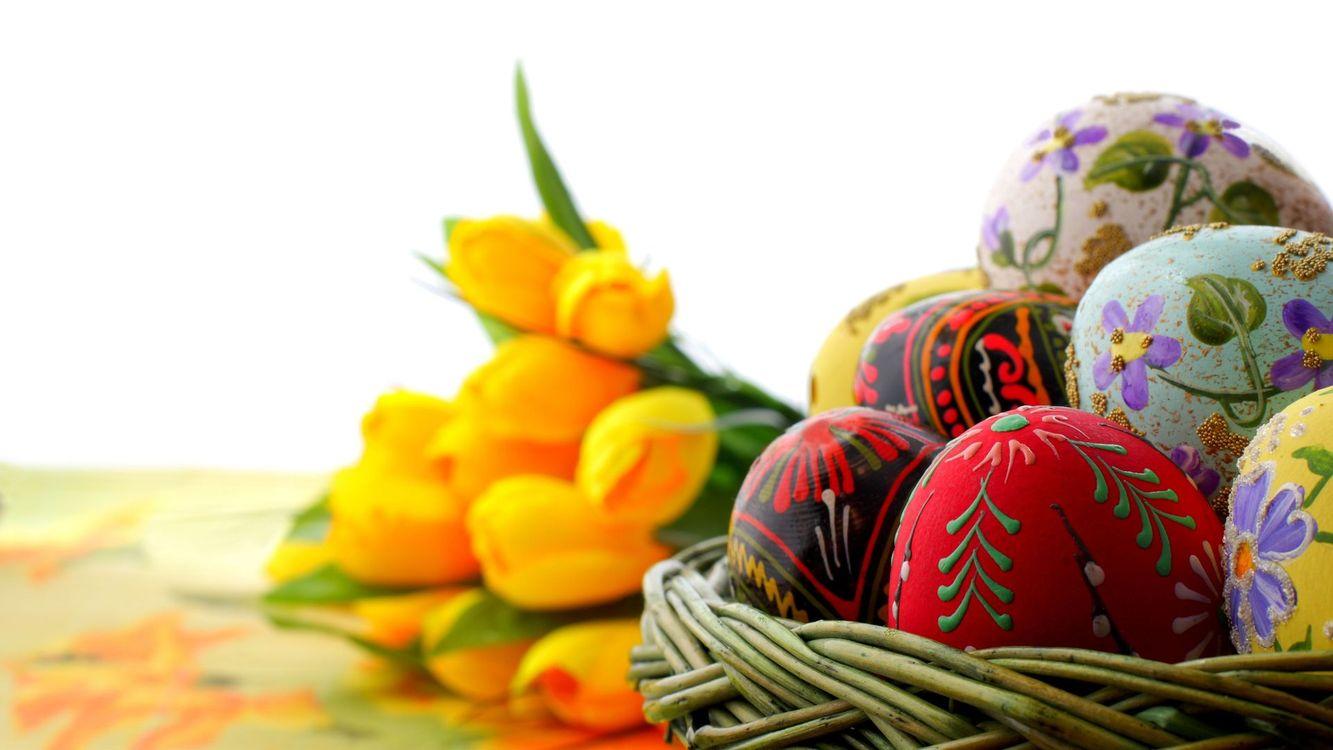Фото бесплатно пасха, корзина, яйца крашеные - на рабочий стол