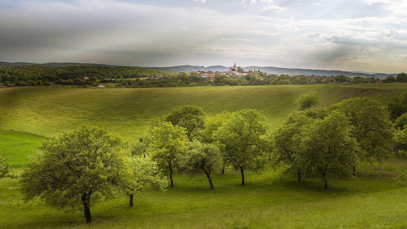 Обои Silica, Словакия, Средняя Европа, холмы, поля, деревья, дома, пейзаж на телефон | картинки пейзажи