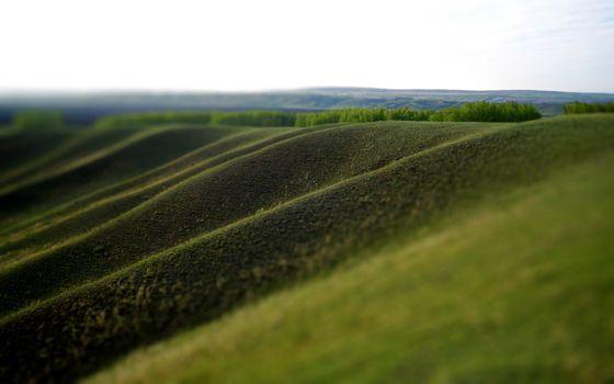 Фото бесплатно холмы, сопки, трава, зеленая, деревья, небо