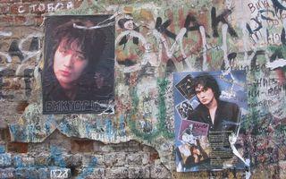 Photo free wall, plaster, bricks