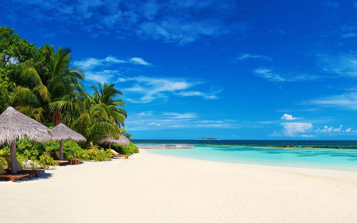 Фото бесплатно тропики, море, пляж, пейзажи - на рабочий стол