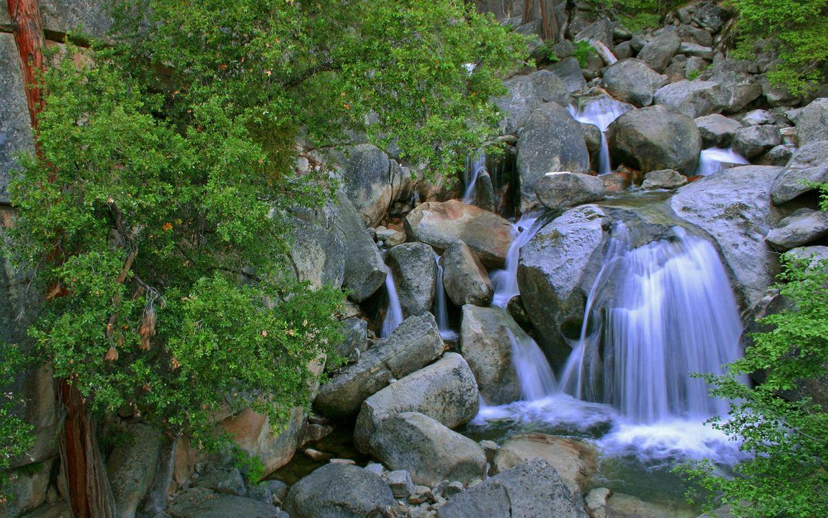 Фото бесплатно вода, река, камни, валуны, берег, деревья, лес, природа, природа