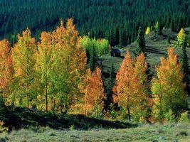 Фото бесплатно избушка, гора, осень