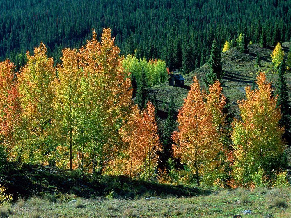 Фото бесплатно избушка, гора, осень - на рабочий стол