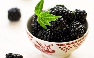 Обои ежевика, ягоды, лето, десерт, миска, листик, зелень, рисунок, узор, еда