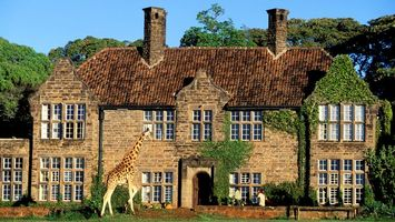 Бесплатные фото жираф,здание,дом,окна,трава,деревья,разное