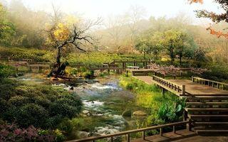 Фото бесплатно парк, мостики, ступеньки, деревья, трава, речка, камни, природа, пейзажи