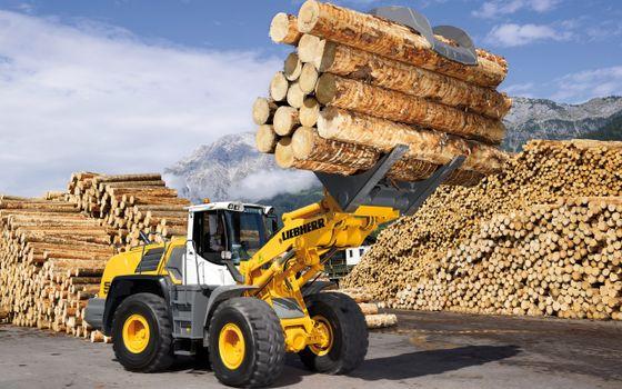 Photo free loader, yellow, wheels