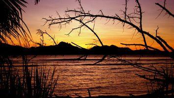 Бесплатные фото река,вода,деревья,кусты,небо,холмы,вечер
