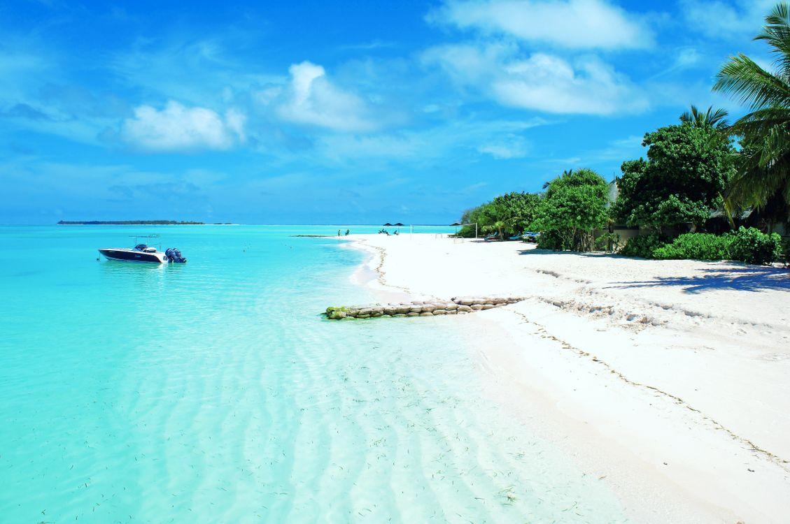 Фото бесплатно тропики, море, пляж и без регистрации