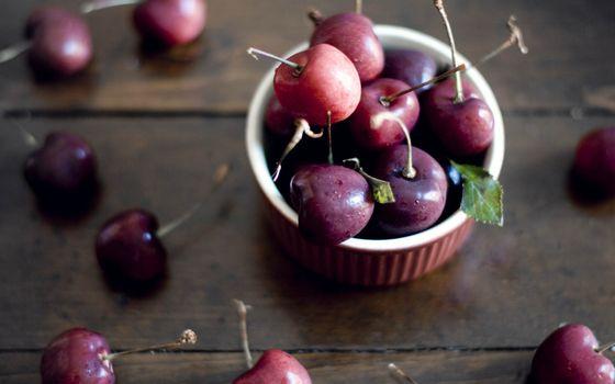 Фото бесплатно яблоки, дичка, хвостик