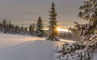 Фото бесплатно солнце, снег, небо