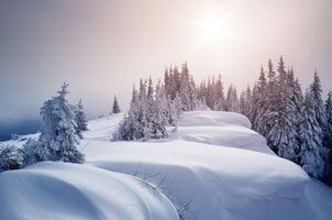 Бесплатные фото зима, закат, снег, сугробы, горы, деревья, пейзаж