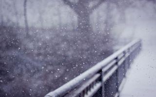 Бесплатные фото зима,природа,снег,перила