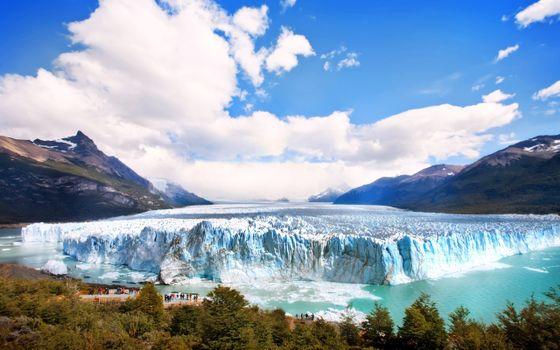Фото бесплатно аргентина, ледник, лес