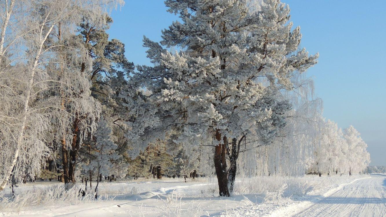 Фото бесплатно снег, синий, природа - на рабочий стол