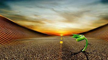 Фото бесплатно дорога, асфальт, разметка